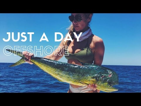 Just a Day Offshore | Summer Fishing