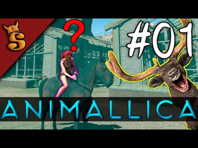 How To Get Started | Animallica #01