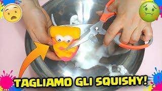 NON TAGLIARE QUESTI SQUISHY: DISASTRO!! Taglio i miei Paffy Yummy Squishy! By Francydreams