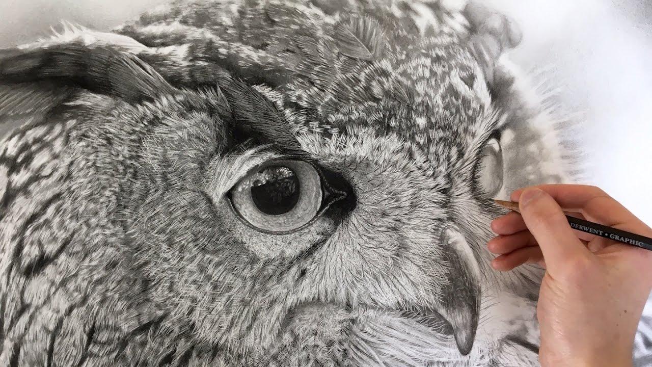 Hyperrealism Hyperrealistic Owl Drawing Youtube