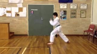 10th Grade - White Belt - 4 Direction punch (Saju Jurugi) -
