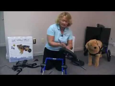 Chariot pour chien Walkin Wheels : instructions et montage