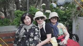 베트남 다낭 여행 코스