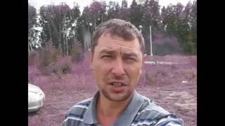 видео Дом из профилированного бруса 6х10