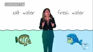 Biotic and Abiotic Factors in Ecosystems - Logos Academy