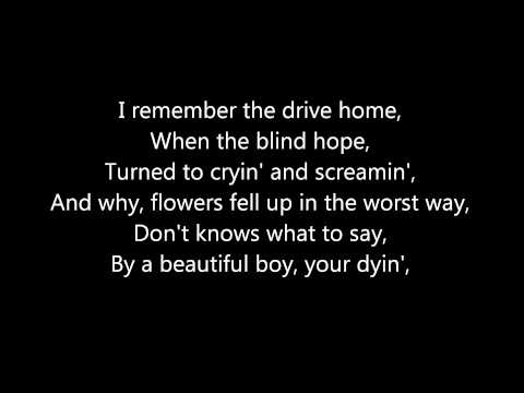 Taylor Swift - Ronan - Lyrics