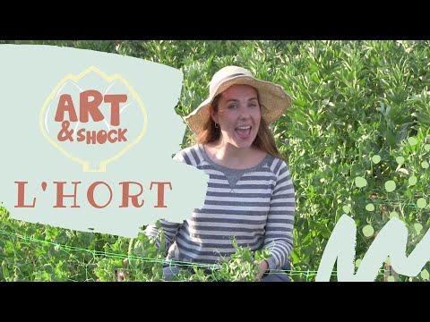 Download 🍅🌽🥕 L'HORT 👩🏽🌾 - ARTiSHOCK ♥️ VÍDEOS INFANTILS EN CATALÀ