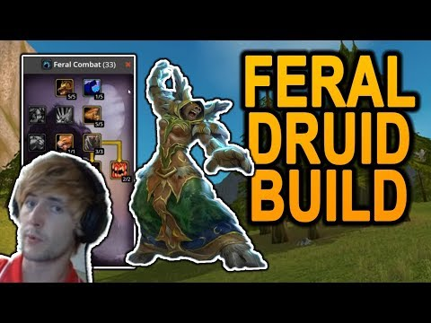 Best Feral Druid Build For Classic WoW - Explained By Top Faerlina Tank