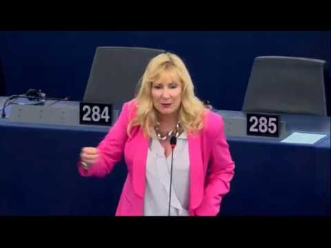 "Romanian MEP tells Janice to ""go home"" after her speech in EU Parliament."