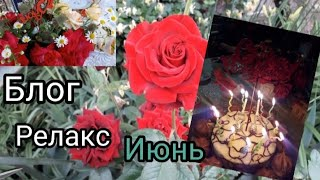РЕЛАКС ВИДЕО  БЛОГ  ||Заготовка на зиму || Много цветов ||День рождения