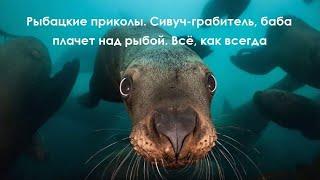Рыбацкие приколы Сивуч грабитель баба плачет над рыбой Всё как обычно