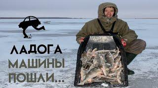 Зимняя рыбалка на Ладоге Ловля окуня на блесну Зимняя блесна