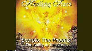 Scorpio The Phoenix-The ability to transform Oct  27th 2014