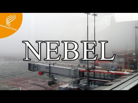 PLANESPOTTING HAMBURG AIRPORT | IM NEBEL | Hamburg and Travel
