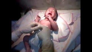 Bayi Baru Lahir | Kelahiran Bayi Sehat Lucu Imut dengan Nama Bayi Laki Laki Akhtar Nabihan Hawwari