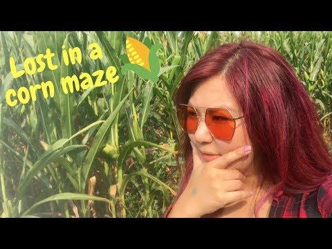 Lost in a Winnipeg corn maze 🌽❓