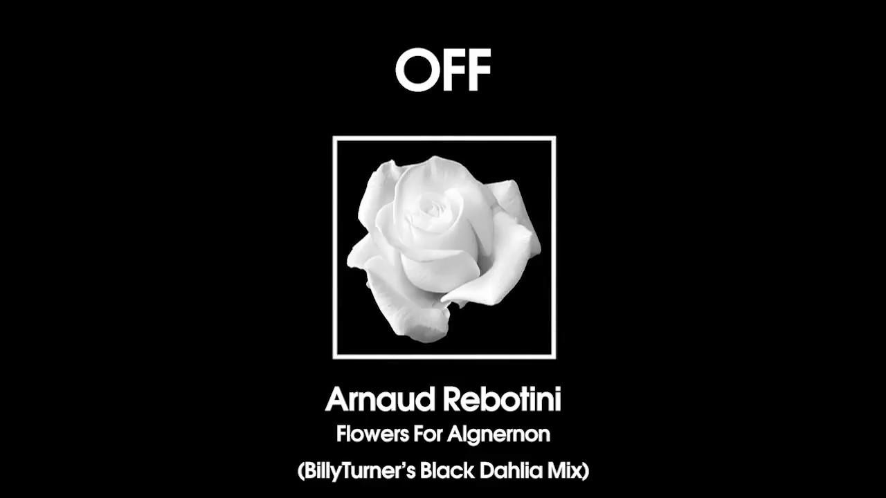 Arnaud rebotini flowers for algernon billy turners black dahlia arnaud rebotini flowers for algernon billy turners black dahlia mix off170 izmirmasajfo