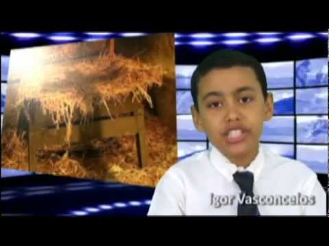 Jesus A Alegria Do Natal Cantata Youtube