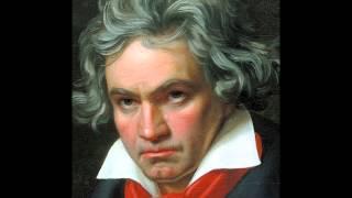 Sinfonía n.º 5, Beethoven, Primer Movimiento-Allegro con brio.