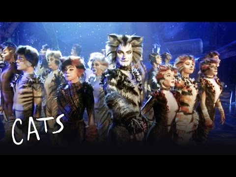 The Invitation to the Jellicle Ball | Cats the Musical