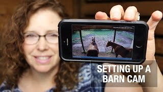 Setting up a Barn Cam