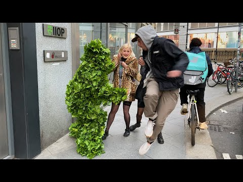 The way he Jumped, it is Hilarious. Bushman Prank