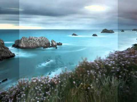 Visionary Hours - A Return To Bashō