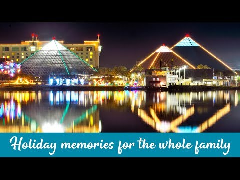 Rick Lovett - Festival Of Lights At Moody Gardens