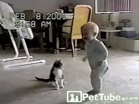 Cutest Wrestling Match Ever -PetTube