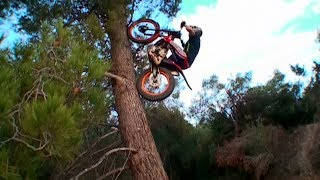 Bike Trial Stunts 2019
