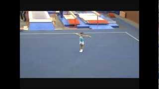 спортивная гимнастика 1 юношеский разряд, вольные