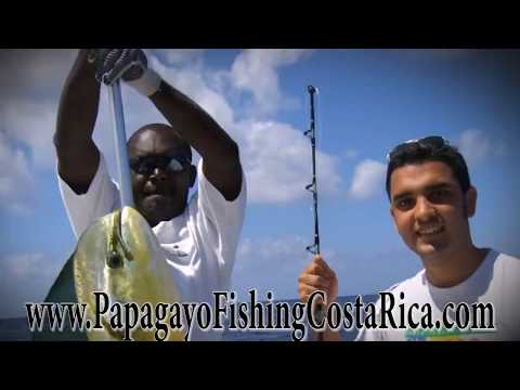Papagayo Fishing Costa Rica - Papagayo Fishing Charters & Day Trips
