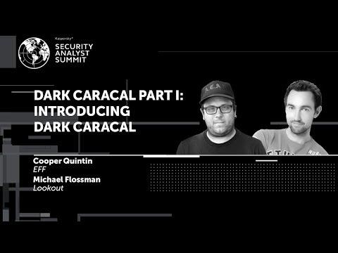 DARK CARACAL PART I: INTRODUCING DARK CARACAL