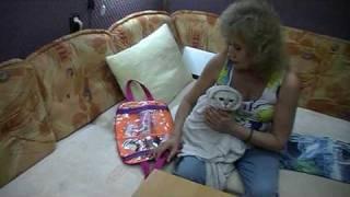 Видеоуроки на http://british-chinchilla.dp.ua