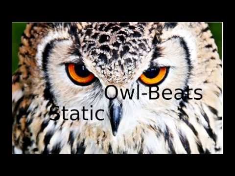 Owl Beats - Static [Ringtone]
