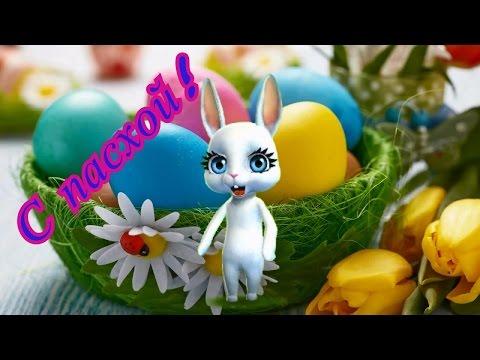 Zoobe Зайка Светлое поздравление с Пасхой - Ржачные видео приколы