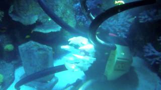 Legoland Windsor - Atlantis The new Underwater Submarine ride - thumbnail