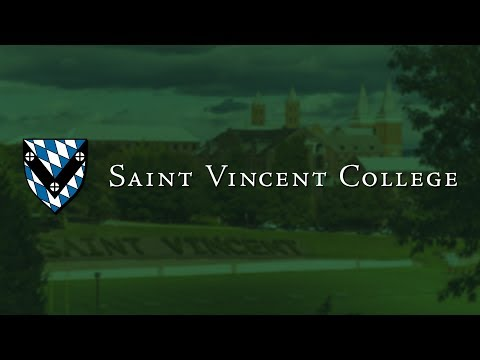 We Are Saint Vincent