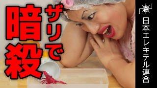 【チャンネル登録お願いします!】 http://goo.gl/gmhWoY 【コードネー...