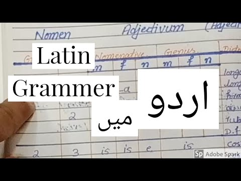 Latin Language Grammer|Adjective|Nomen Adjectivum|M ADEEL HASHIM|Urdu|Hindi