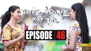 Paawela Walakule | Episode 46 19th January 2020 Thumbnail