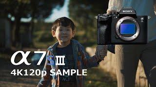 SONY α7SⅢ 4K120P SAMPLE VIDEO