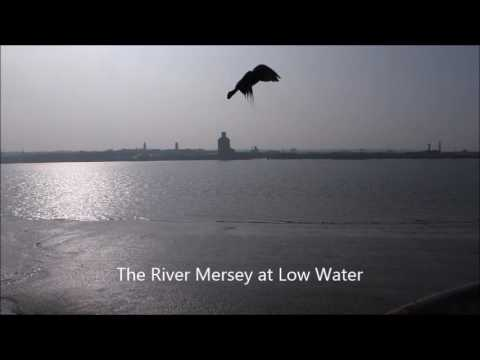 Liverpool Tourist - River Mersey at Low Water