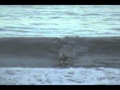 Santa Monica - Unknown Surfer