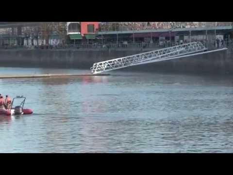 La ballena salió del dique de Puerto Madero