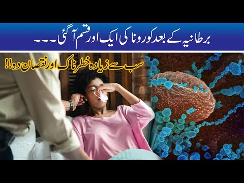 Dangerous And High Alert ! South African Corona Virus Comes In Pakistan