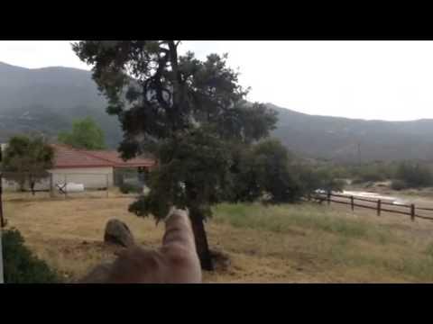Thunder In Pinyon Pines California