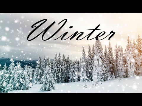 Cozy Winter JAZZ  - Lounge Background JAZZ Music for Stress Relief