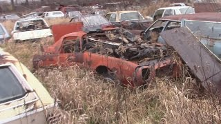 Junk Yard Search & BONUS Story Time With Paul