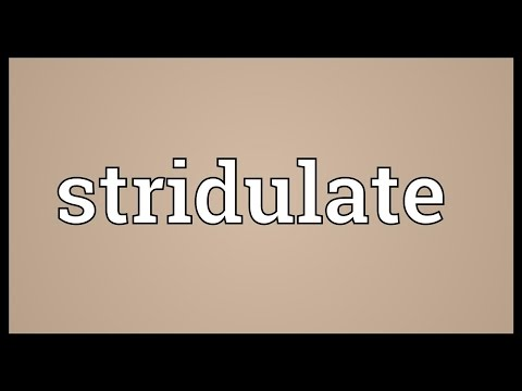 Header of stridulate
